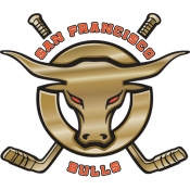 San Francisco Bulls Logo